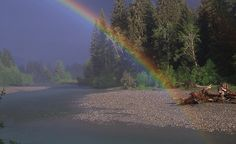 """A rainbow touches the Hoh River in the Hoh Rain Forest, Olympic National Park, Wash.""   (Courtesy photoginthewild/myBudgetTravel)"