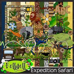 Exepedition Safari