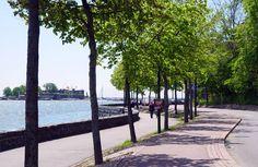 Ehrenströmintien rakentaminen 1940-luvulla muutti Kaivopuiston ilmettä ratkaisevasti katkaisemalla suoran yhteyden meren rantaan [Mika Lappalainen]