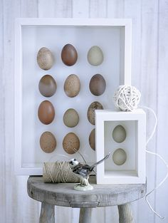 A great way to display your Easter eggs using a picture frame and shadow box from your local Goodwill: www.goodwillvalleys.com/shop
