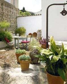1000 images about terrazas y albercas on pinterest for Patios y terrazas