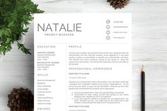 Professional Resume Template CV - Resumes