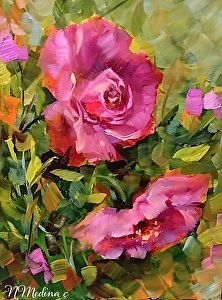 Adrift in the Breeze - Pink Roses of Coronado Island www.nancymedina.com