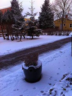 2015-02-03 #Vinter i Oxie !!! Barn blir glada.