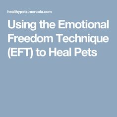 Using the Emotional Freedom Technique (EFT) to Heal Pets