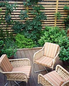 All herbs! It'd smell so fab!  I want to do this, but in containers on the deck.