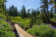 Spray Park Trail, Mount Rainier National Park, Washington.
