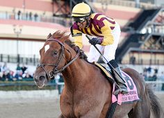 'TDN Rising Star' Irish War Cry (Curlin) bounced back in a big way in Saturday's GII Wood Memorial S. at the Big A to punch his ticket to the GI Kentucky Derby in style. It …