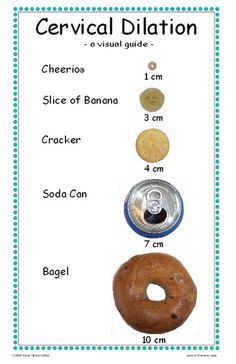 Cervical Dilation Chart. With Mase, I was a Cheerio... Let's see if I can make it to a bagel this time! LOL!