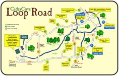 On 9-13-14 I biked the Cades Cove Loop Road! (11 miles) It was overcast, misty and awesome!  There are a lot of uphill climbs but for every uphill there was an exhilarating downhill.  Totally worth it!  | Cades Cove Loop Road Map