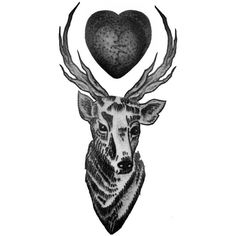 louis tomlinson deer and heart tattoo design | Best Tattoo ...