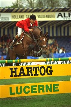 Lucky Light DVE 366 Årets Hingst 1998   Lucky Light og Søren Knudsen Lucky Light DVE 366 var mest vindene springheste i 1993 og han blev udnævnt til Elitehingst i 1995. Samme år vandt han Sire of the World i Zangerheide. Han bliv tildelt fortjentsmedalje i guld i 1996. Han har flere Grand Prix placeringer og har startet Intermediaire dressur.  Han er far til adskillige OL heste bl.a. Limbo.