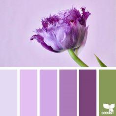 Design Seeds + Color Atlas by Archroma® Design Seeds, Colour Pallete, Colour Schemes, Color Combos, Color Palettes, Flora Design, Deco Boheme, Color Balance, Colour Board
