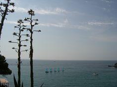 Mediterranean sea from Cavalaire