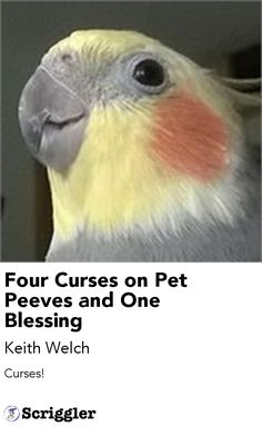 Four Curses on Pet Peeves and One Blessing by Keith Welch https://scriggler.com/detailPost/story/56438 Curses!