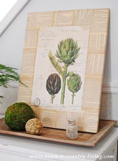 Make your own wall art using a botanic print, book pages, and an inexpensive craft store canvas.