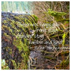 """""""Always Stay Humble & Kind"""" - Tim McGraw photo credit Acres of Memories. Cathedral Grove, Vancouver Island BC"""