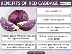 9 Impressive Benefits of Red Cabbage | Organic Facts