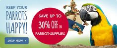 Friday #Special #Offer from #Parrot #Essentials Save up to 35% on Parrot Supplies http://www.parrotessentials.co.uk/special-offers/