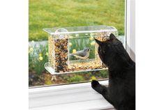 間近でバードウォッチングできる「One-Way-Mirror Birdfeeder」の紹介。