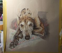 I enjoy painting and drawing dogs in all shapes and forms, but some more than others. I do love it when I get asked to paint a sight houn. Wolfhound, Shape And Form, Greyhounds, Whippet, Pet Portraits, Colored Pencils, Painting & Drawing, Pop Art, Moose Art