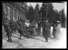 The General's Departure, St. Moritz Monochrome Giclee print Edition with embossed studio stamp, 68 x Sold with the original glass plate negative Previously on sale at Adam's. Giclee Print, Monochrome, Photographs, Plate, Stamp, Horses, The Originals, Studio, Animals