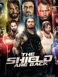 The Shield: Seth Rollins, Roman Reigns & Dean Ambrose Roman Reigns Shirtless, Wwe Roman Reigns, Brie Bella, Nikki Bella, Divas, Roman Reigns Dean Ambrose, Roman Regins, The Shield Wwe, Wwe Wallpapers