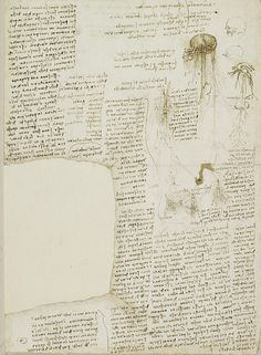 Page from Leonardo da Vinci's notebook, including his 'to do' list. So cool!