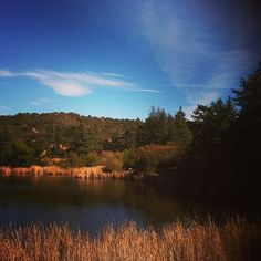 Somehow, this place exists in LA.  #hikes we love #Franklin Canyon