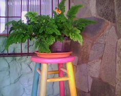 Banquinho colorido