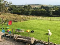 When a #llama thinks he should be part of the #weddinggames on offer  ... Can't believe Laurie just sat there in the middle of yesterday's wedding!