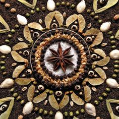 Beautiful seed mandala -- Inspiring Quotes about the Sacredness of Seeds, by Dr. Vandana Shiva, Seed Art, Shiva Photos, Boho Life, Environmental Art, Nature Crafts, Fractal Art, Installation Art, Art Installations
