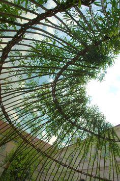 Pergola Ideas For Shade Product Garden Art, Garden Design, Living Willow, Patio Central, Willow Branches, Solar Shades, Bamboo Garden, Shade Structure, Natural Garden