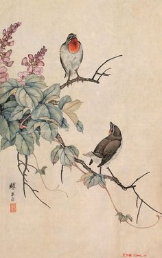 Japanese Painting, Chinese Painting, Chinese Art, Art Chinois, Art Japonais, Bird Drawings, Japan Art, Beautiful Drawings, Gravure