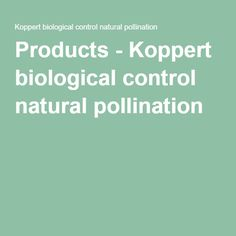 Products - Koppert biological control natural pollination