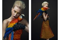 """birds editorial - Photographer Mudita Aeron captures Glassbook's """"Birds"""" editorial exclusive. The studio series finds beauty in winged creatures an. Editorial Photography, Fashion Photography, Lazy Fashion, Feather Fashion, Parrot Bird, Body Makeup, Animal Fashion, Hair Photo, Photo Look"""