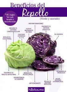 Beneficios del repollo |   http://mujer.es.msn.com/salud/20-alimentos-que-quitan-el-hambre-3#image=21