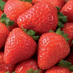 Delizz® Strawberry Seed