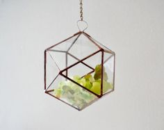 Hanging Glass Terrarium  Wall Geometric Planter  Stained