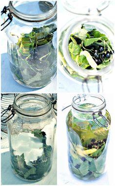 sirop citron eau cointreau la tradition belge est de boire un verre d 39 alcool avec la famille. Black Bedroom Furniture Sets. Home Design Ideas