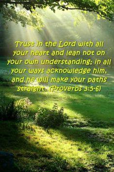 Proverbs 3 5 6, Google Images, Paths, Verses, Words, Life, Google Search, Lyrics, Horse