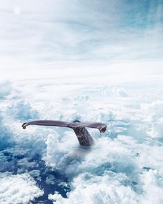 Surreal and Dreamful Photo Manipulations by Tim El-Helou #photography