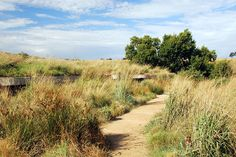 GREENinc-Homini « Landscape Architecture Works | Landezine