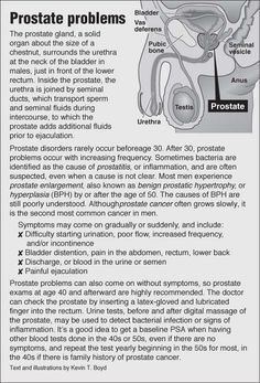 Information graphic about Prostate Problems (NSFW) with links to acupressure for prostate problems