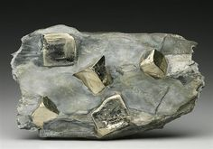 Cubic crystals of light metallic yellow Pyrite measuring to 2cm+ stand proud of a light grey Schist matrix with some white Dolomite from Virgin Valley, Austria.