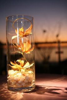 Would love this as a simple center piece for a beach wedding Plan My Wedding, Our Wedding, Wedding Planning, Dream Wedding, Trendy Wedding, Wedding Table, Wedding Ideas, Beach Wedding Flowers, Wedding Beach