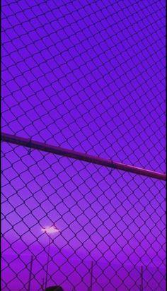 Violet Aesthetic, Dark Purple Aesthetic, Lavender Aesthetic, Aesthetic Colors, Aesthetic Pictures, Nature Aesthetic, Aesthetic Collage, Neon Purple, Purple Walls