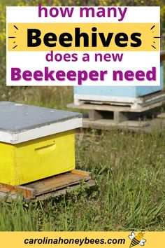 How many hives should a new beekeeper begin with? Is one hive enough to start with bees, what are the challenges of having several beehives. #carolinahoneybees