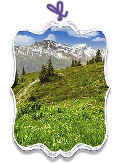 "Alpen Mood ""Bergpanorama"""
