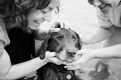 joy sessions in black and white | Sarah Beth Photography | Minneapolis Saint Paul Minnesota Dog & Pet Photographer | Studio Pet Photography | Joy Sessions